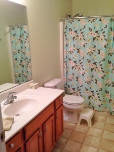 Clean Bathroom 1