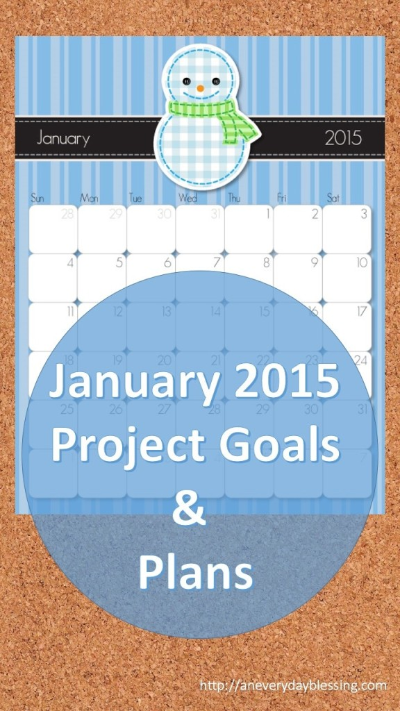 January 2015 Project Plan